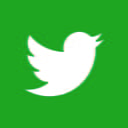 twitter icon green